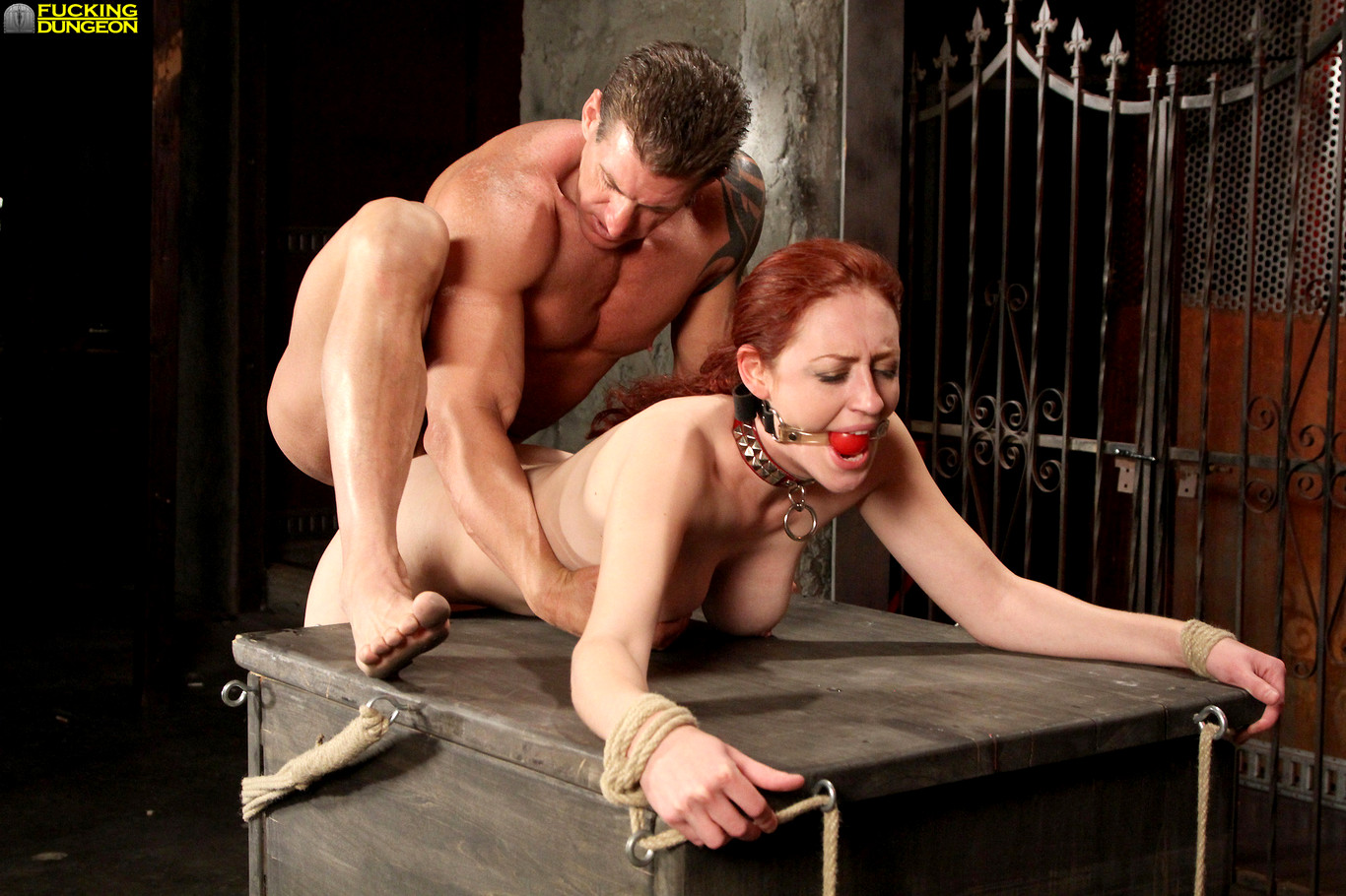 dungeon-fuck-anmals-nudesexxxy-videos