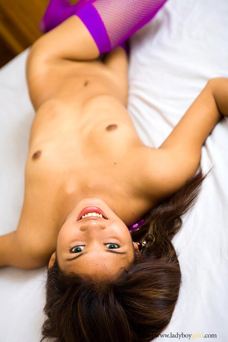 Sex Hd Mobile Pics Ladyboy Gold Lee Just Thai Ladyboy Porn -2262