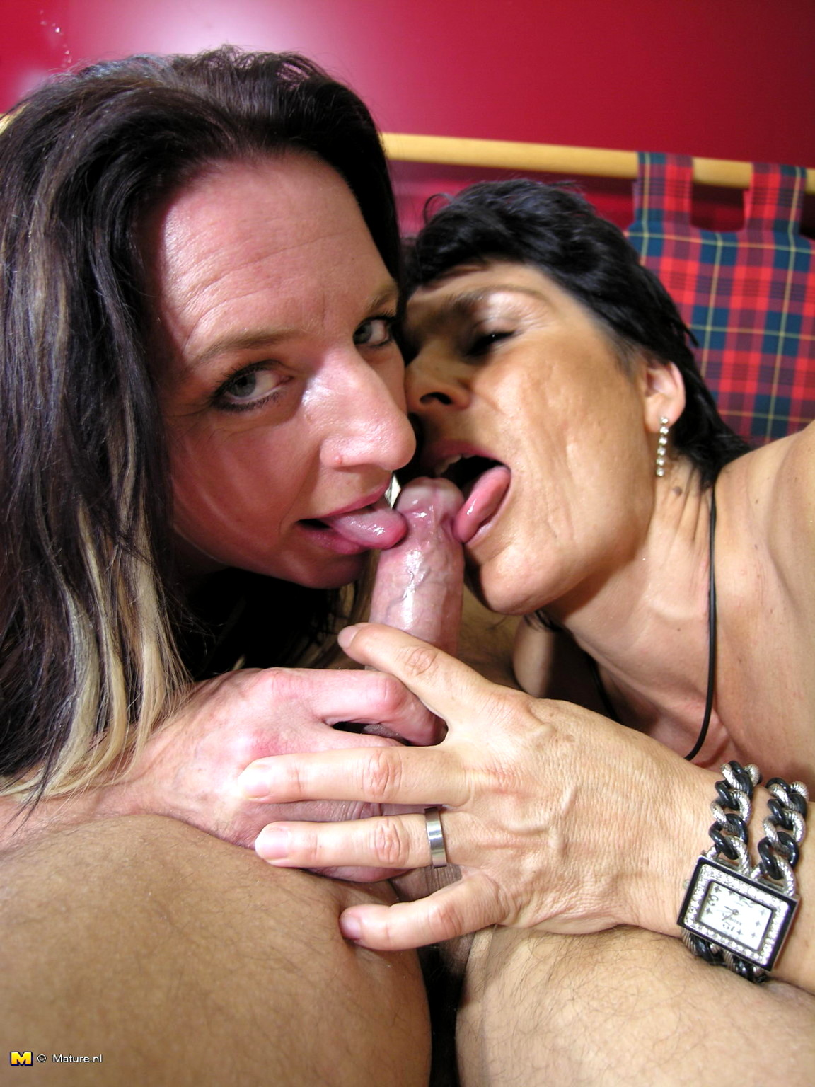 2 milfs one cock