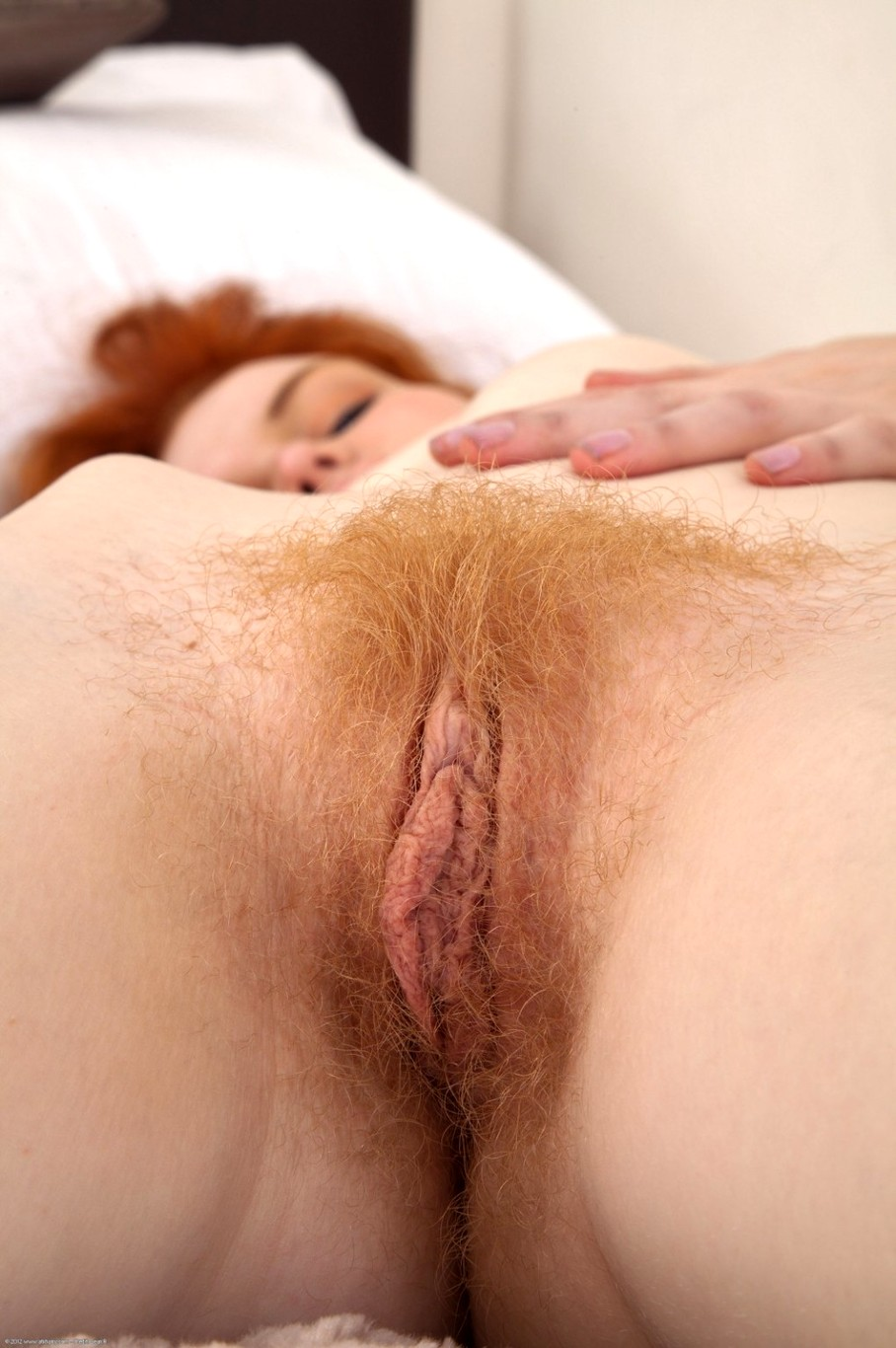 Swinger groups red pussy hair muff thomas
