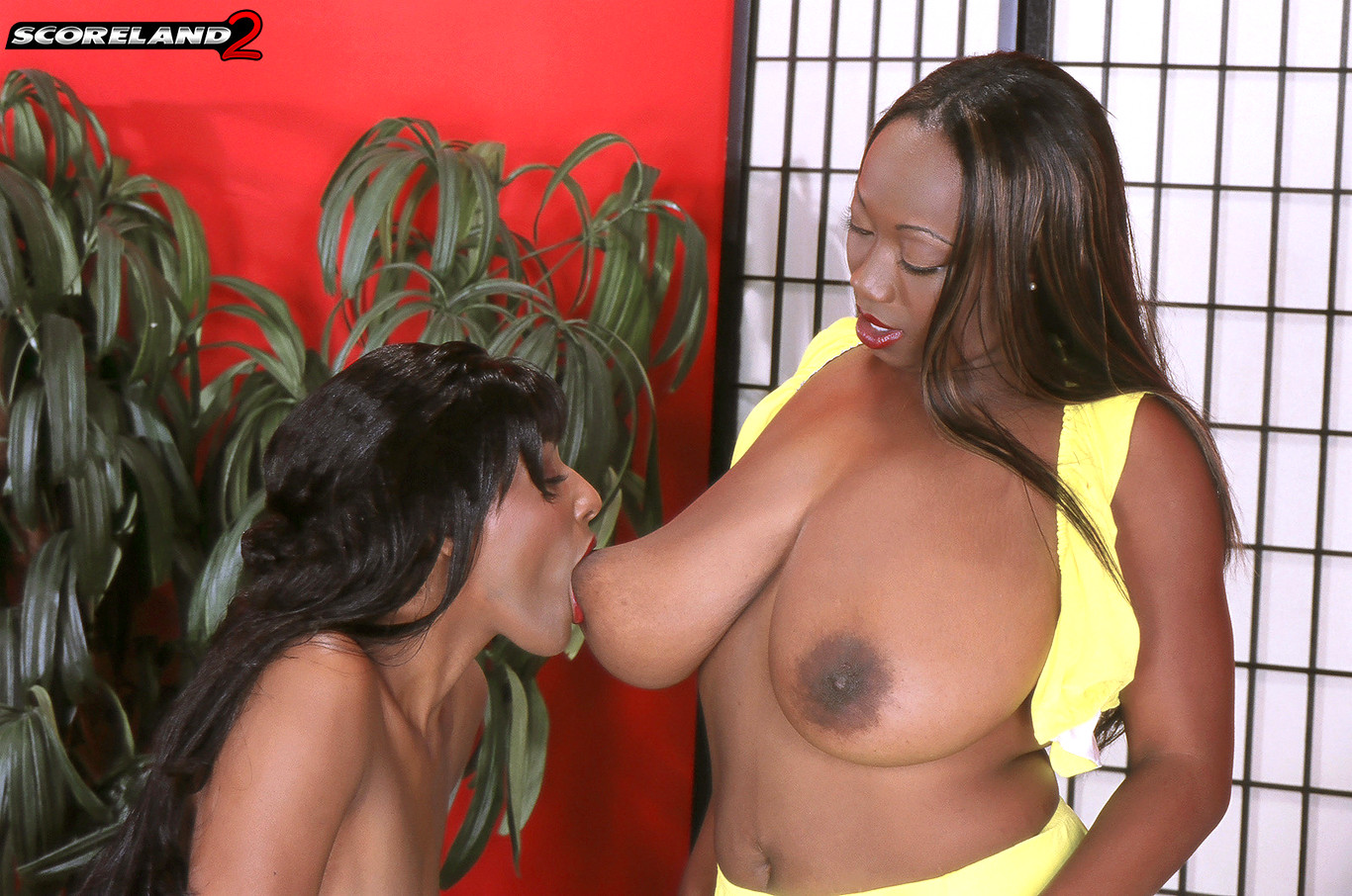 Africa sexxx big natural black boobs - 1 part 6