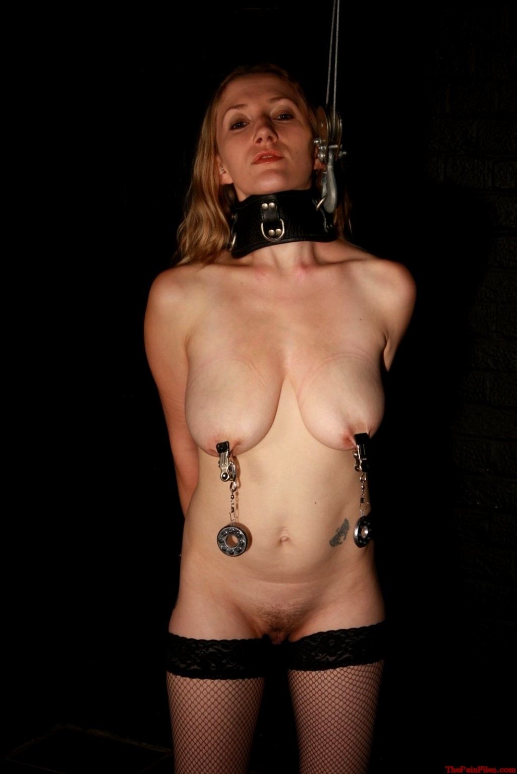 Slave women led around y pierced nipples free xxx galeries